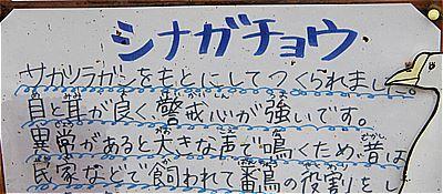 s-_K528207.jpg